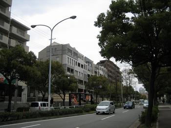2009 006.jpg