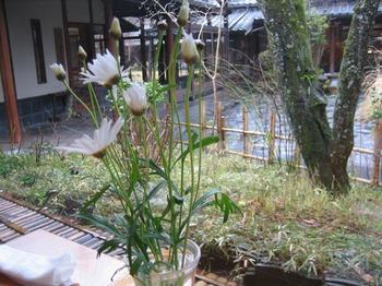 2009黒川・ゆふいん 062.jpg