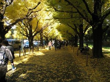 東京 016.jpg