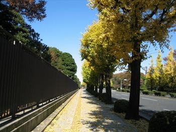東京 057.jpg