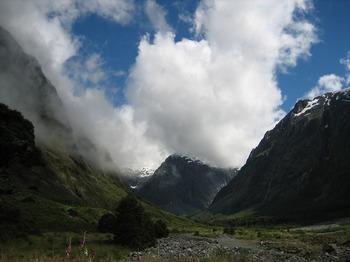 NZ 084.jpg