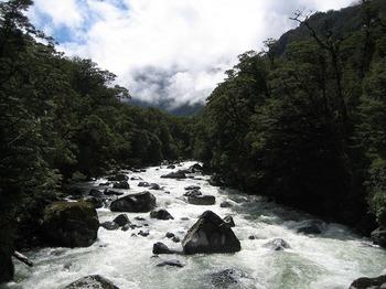 NZ 099.jpg