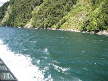 NZ 107.jpg