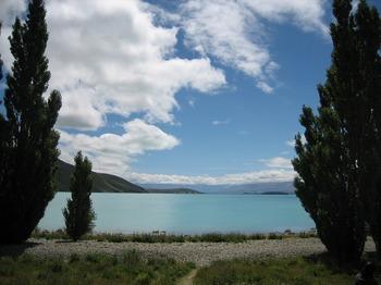 NZ 205.jpg