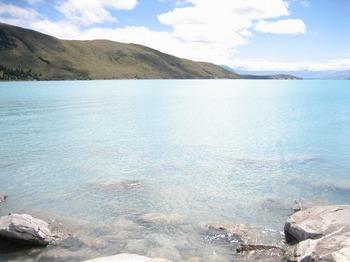 NZ 212.jpg